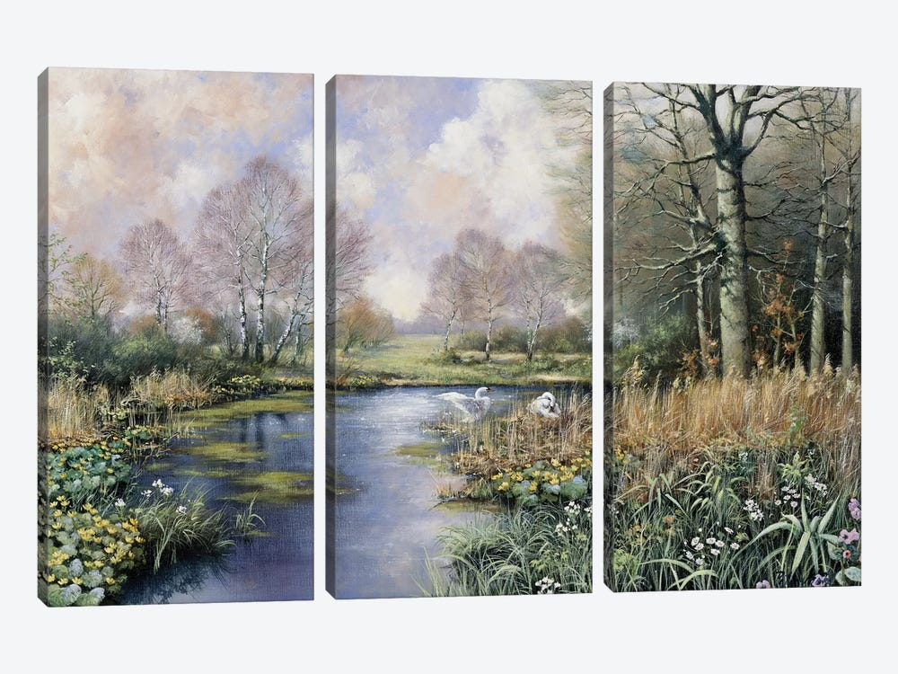 Spring Has Started by Peter Motz 3-piece Art Print