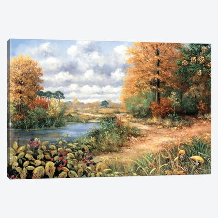 Autumn Time Canvas Print #MTZ5} by Peter Motz Canvas Art