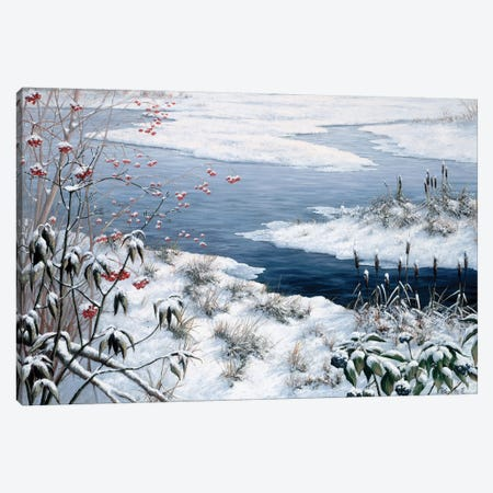 Winter Canvas Print #MTZ60} by Peter Motz Canvas Wall Art