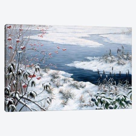Winter Canvas Print #MTZ60} by Peter Motz Canvas Wall Art