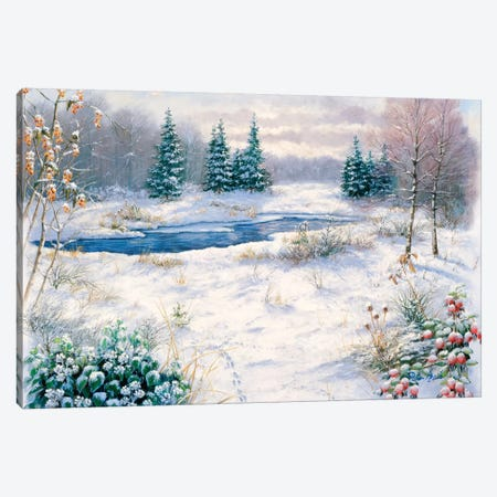 Winter Time Canvas Print #MTZ61} by Peter Motz Canvas Wall Art