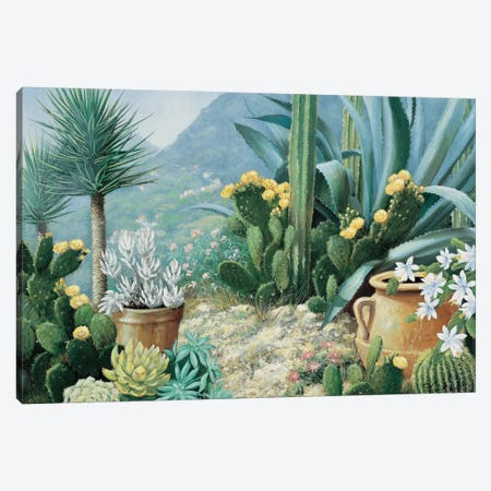 Cactus Canvas Print #MTZ8} by Peter Motz Art Print