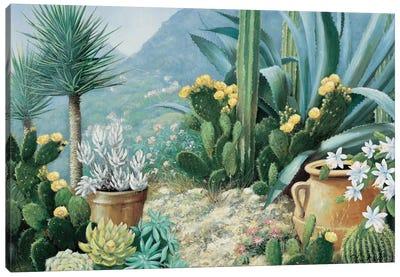 Cactus Canvas Art Print