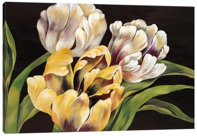 Holland Calling Canvas Art Print
