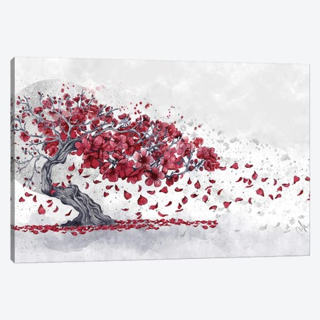 Cherry Blossom Canvas Print #MUP19} by Marine Loup Canvas Artwork