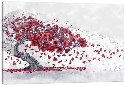 Cherry Blossom Canvas Art Print