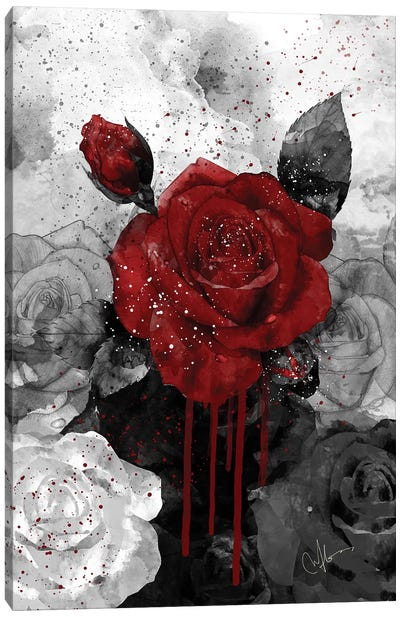 Crimson Canvas Art Print