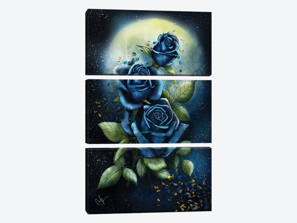 Night Roses by Marine Loup 3-piece Canvas Art