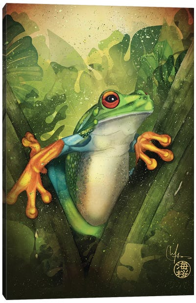 The Frog Canvas Art Print