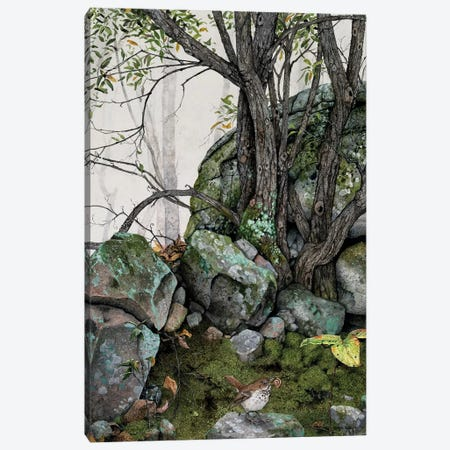 Crannies Canvas Print #MVA109} by Maggie Vandewalle Canvas Art Print
