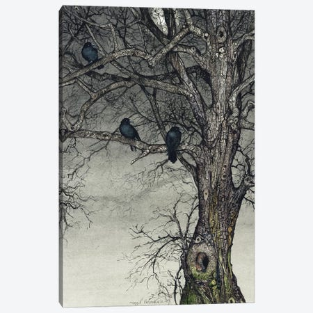 The Roosting Place Canvas Print #MVA110} by Maggie Vandewalle Canvas Wall Art