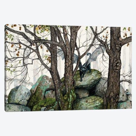 The Wild Canvas Print #MVA113} by Maggie Vandewalle Canvas Artwork