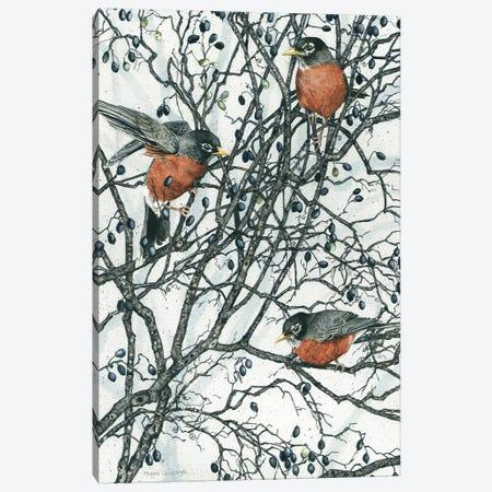 Winter Berries Canvas Print #MVA136} by Maggie Vandewalle Canvas Art Print