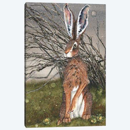 Briar Canvas Print #MVA13} by Maggie Vandewalle Canvas Print