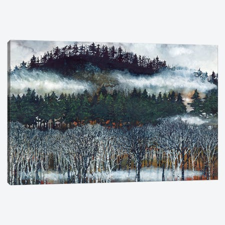Brume II Canvas Print #MVA14} by Maggie Vandewalle Canvas Artwork
