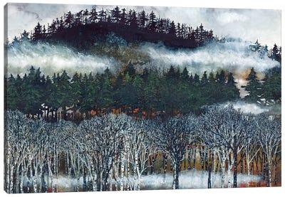 Brume II Canvas Art Print