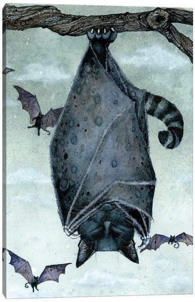 Catnap Canvas Art Print