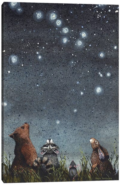Constellations Canvas Art Print
