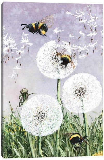 Dandybees Canvas Art Print