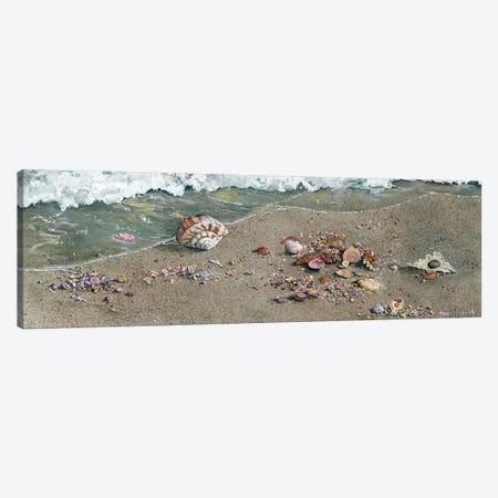 Detritus Canvas Print #MVA26} by Maggie Vandewalle Canvas Print