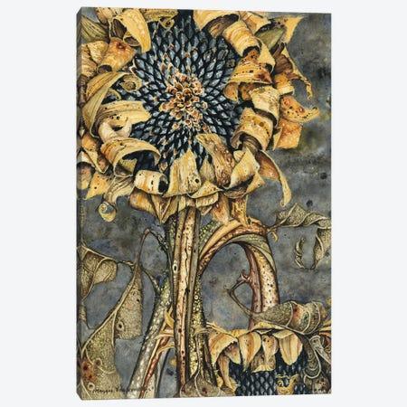 Duskflower Canvas Print #MVA27} by Maggie Vandewalle Canvas Art Print