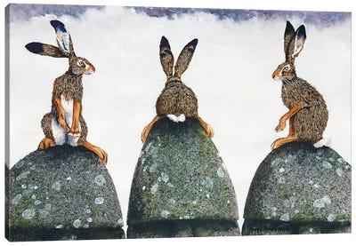 Easter Island Canvas Art Print