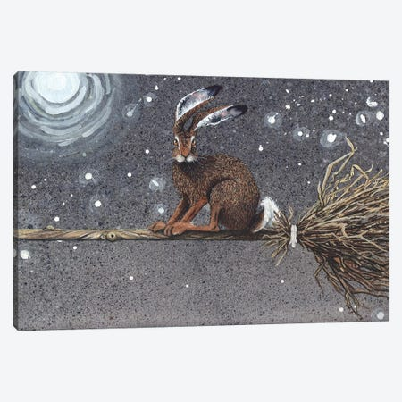 Flyaway Hare Canvas Print #MVA36} by Maggie Vandewalle Canvas Wall Art