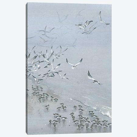 Fogbound I Canvas Print #MVA37} by Maggie Vandewalle Canvas Art