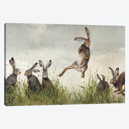Hijinx Canvas Print #MVA44} by Maggie Vandewalle Art Print