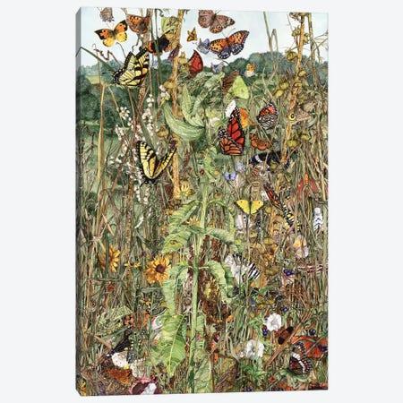 Late Summer Canvas Print #MVA52} by Maggie Vandewalle Art Print
