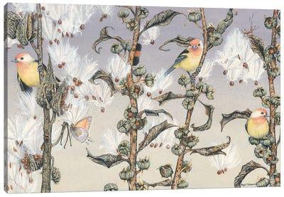 Aloft Canvas Art Print