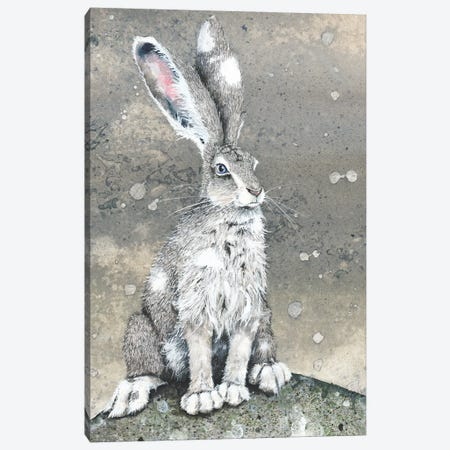 Silver Canvas Print #MVA62} by Maggie Vandewalle Canvas Art