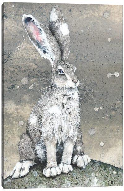 Silver Canvas Art Print