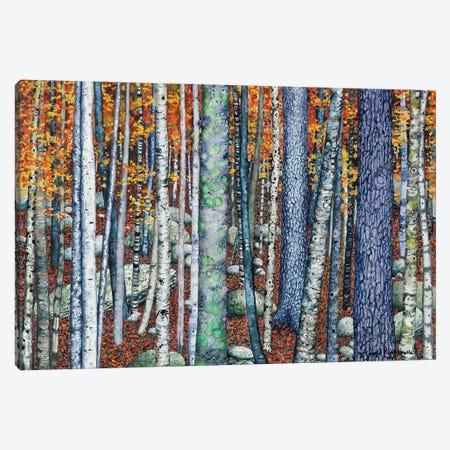 Sticks And Stones Canvas Print #MVA66} by Maggie Vandewalle Canvas Art Print
