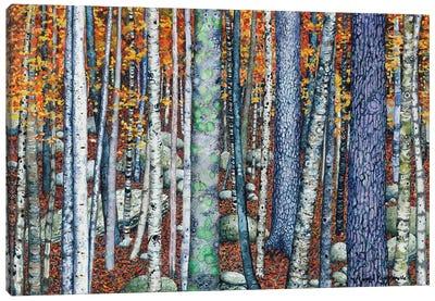 Sticks And Stones Canvas Art Print
