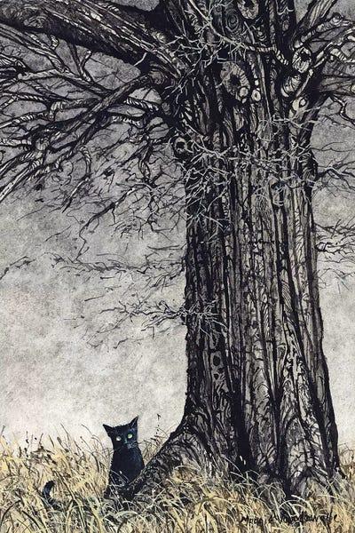 Wild Thing Canvas Print By Maggie Vandewalle Icanvas