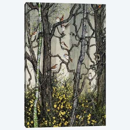 Winter Jasmine Canvas Print #MVA84} by Maggie Vandewalle Canvas Art Print