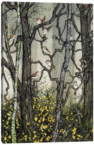 Winter Jasmine Canvas Art Print