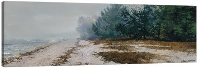 Morning Fog Canvas Art Print