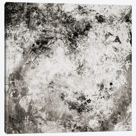 Chaotic Calm Neutral Canvas Print #MVI102} by Mlli Villa Canvas Art