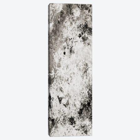 Chaotic Calm One Neutral Canvas Print #MVI103} by Mlli Villa Canvas Artwork