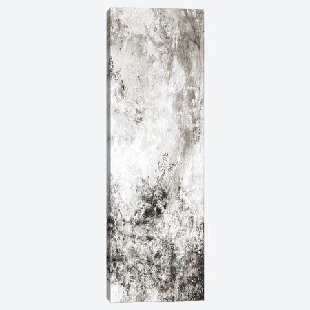 Chaotic Calm Two Neutral Canvas Print #MVI104} by Mlli Villa Art Print