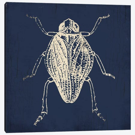 Bug Life Blue I Canvas Print #MVI114} by Mlli Villa Canvas Wall Art