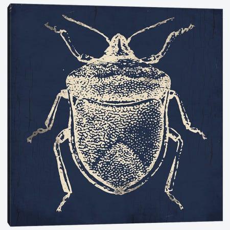 Bug Life Blue II Canvas Print #MVI115} by Mlli Villa Canvas Art