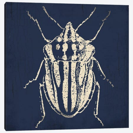 Bug Life Blue III Canvas Print #MVI116} by Mlli Villa Canvas Wall Art