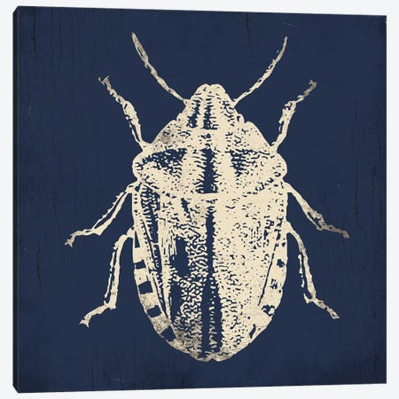 Bug Life Blue IV Canvas Print #MVI117} by Mlli Villa Canvas Artwork