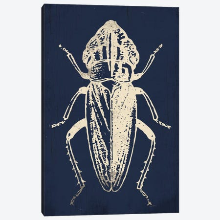 Bug Life Blue Three Canvas Print #MVI119} by Mlli Villa Canvas Art Print