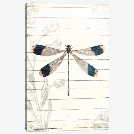 Dragonfly Look Canvas Print #MVI121} by Mlli Villa Canvas Art