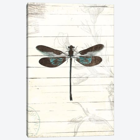 Dragonfly Look II Canvas Print #MVI122} by Mlli Villa Canvas Art