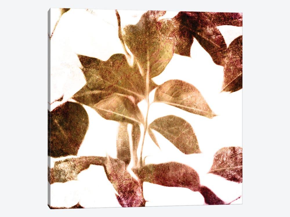 Fall Universal Leaves by Mlli Villa 1-piece Canvas Print